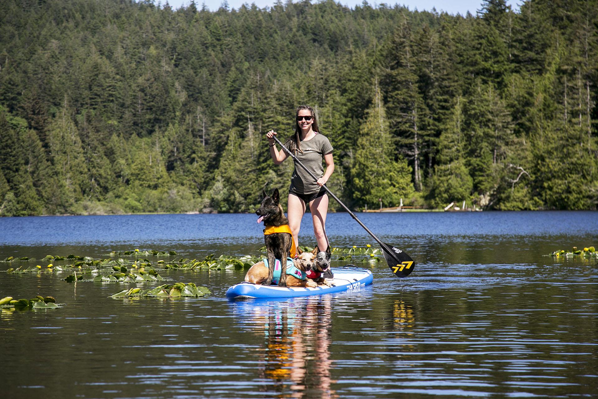 thurso surf ambassador ali paddle board dog sup