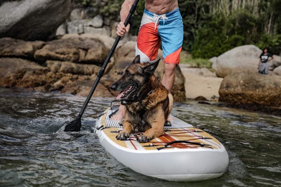 Man with dog paddling on SUP near rocks