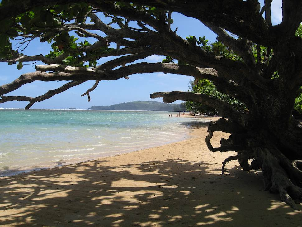 Anini Beach, Kauai - a great place to go camping with your SUP